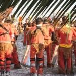 Akuna Matata – La tribù delle scimmie