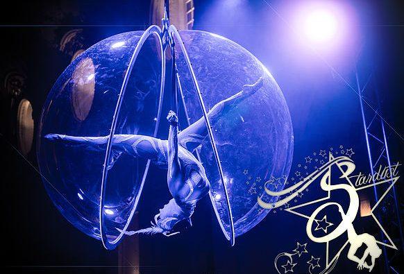Show di Natale – Stardust